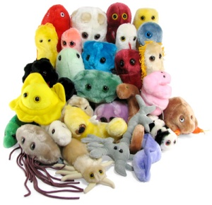 Giant stuffed microbes make the lethal loveable